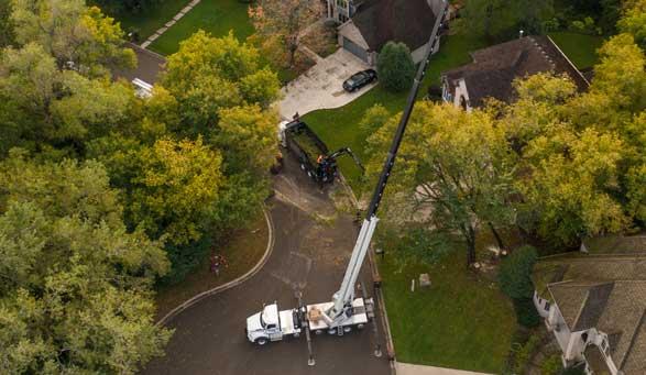 Tree Removal Cranes